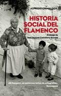 Historia social de flamenco